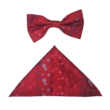 D129. RED/BLUE SMALL FLOWERS BOWTIE&HANKY SET Thumbnail