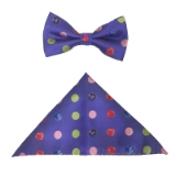 PURPLE/MULTI BIG DOT BOWTIE ST Thumbnail