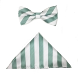 MINT STRIPE BOW TIE SET Thumbnail