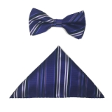 PURPLE/NAVY STRIPE BOWTIE SET Thumbnail