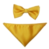 D72. SHINY GOLD SOLID BOWTIE&HANKY SET Thumbnail